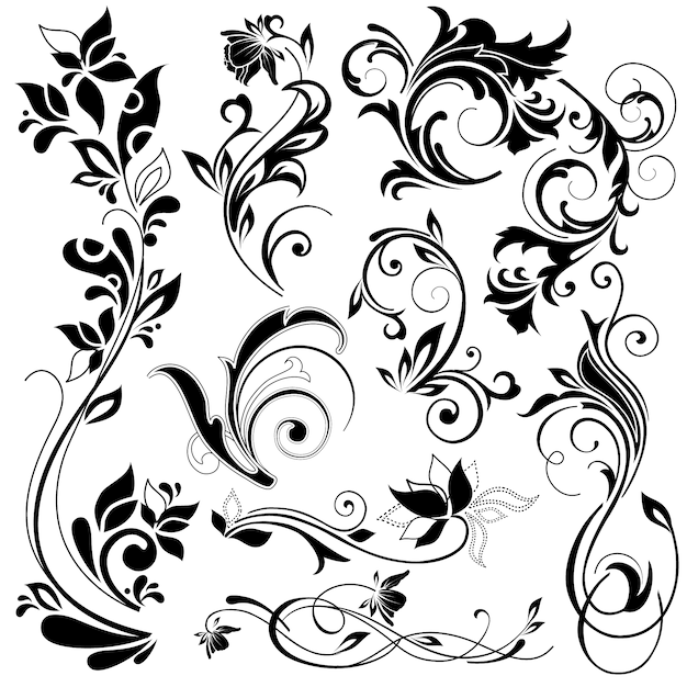 floral vectors photos and