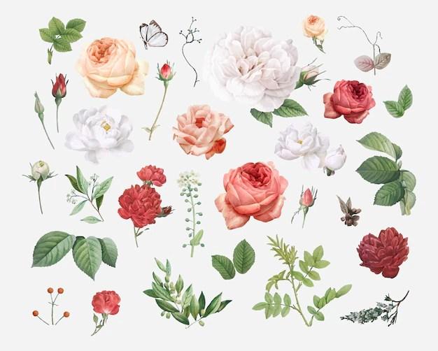 floral background vectors photos