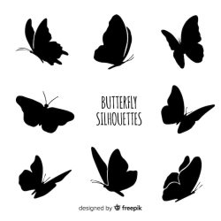 Butterfly Silhouette Images Free Vectors Stock Photos & PSD
