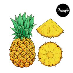 Pineapple Images Free Vectors Stock Photos & PSD