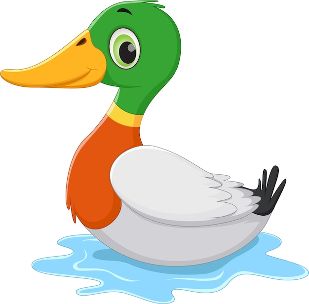 duck vectors and psd files