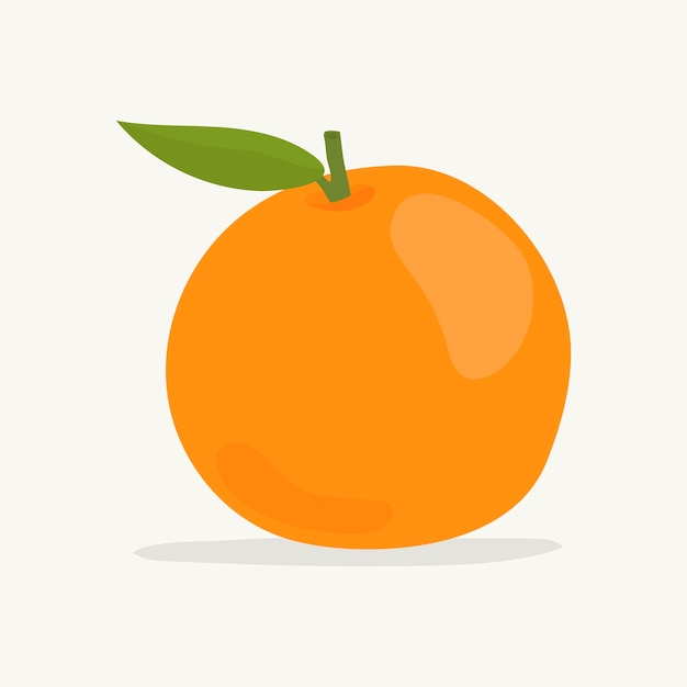 Hand Drawn Colorful Orange Il Ration