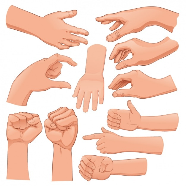 hand vectors photos and