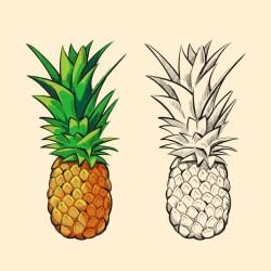 Premium Vector Outline and orange pineapple