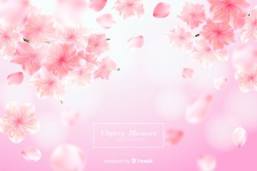Pink Flower Images Free Vectors Stock Photos & PSD