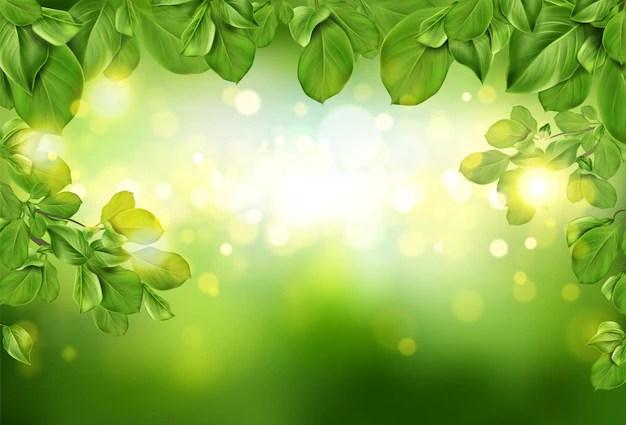 green background vectors photos