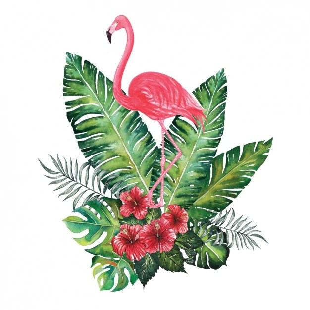 35+ Gambar Flamingo Kartun Png