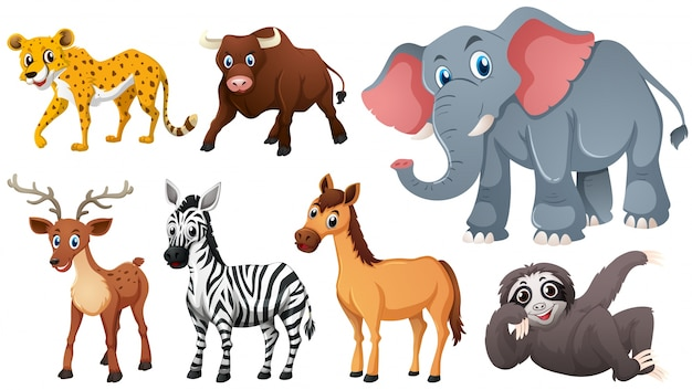 animals vectors 139 000