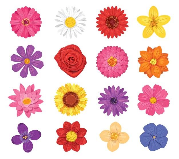 Imagenes De Flores Para Imprimir A Color Y Recortar