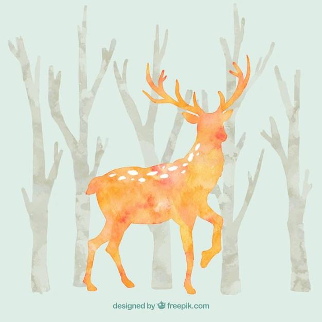 Cervo in legno naturale di montagna autunno bosco degli animali  Scaricare foto gratis