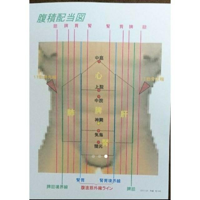 鍼灸・積聚治療や気血治療に用いる背部と腹部の配當図(各領域 ...