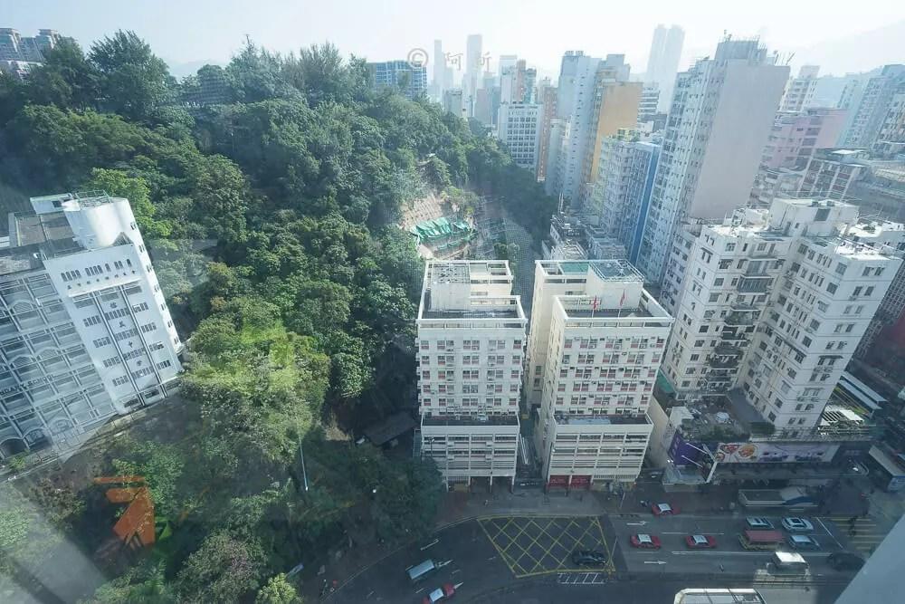油麻地城景國際酒店,香港城景國際酒店,城景國際酒店,城景國際38