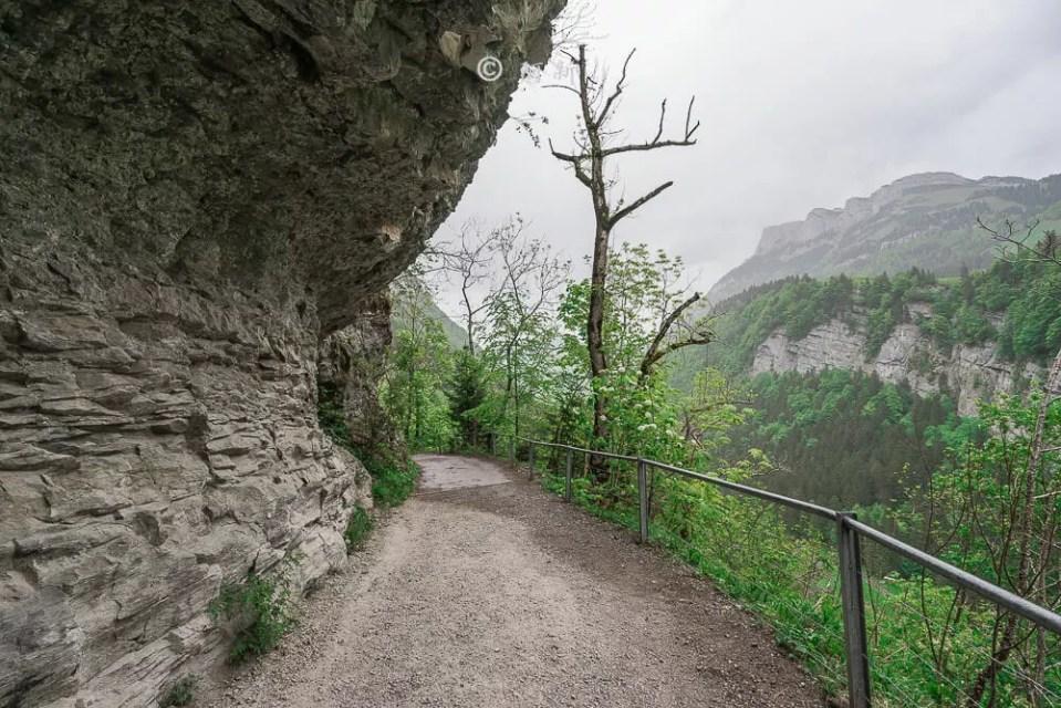 瑞士阿彭策爾塞阿爾卑湖,Seealpsee,塞阿爾卑湖,瑞士Seealpsee,瑞士塞阿爾卑湖,瑞士希阿爾卑湖,希阿爾卑湖-14