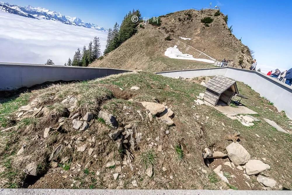 瑞士石丹峰stanserhorn,瑞士石丹峰,stanserhorn,石丹峰,瑞士stanserhorn,瑞士旅遊-41