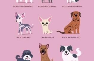 [圖文插畫]全球狗狗插畫博覽會