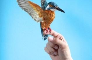 [平面設計]3D紙雕工藝創作