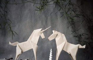 [平面設計]摺紙藝術動物世界
