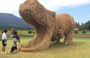 [創意行銷]日本新舄Wara Art Festiva水稻藝術節