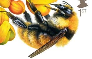 [平面插畫]超美蜜蜂郵票設計
