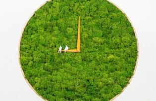 [文創設計]荷蘭出品「苔蘚草皮時鐘」