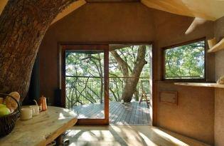[建築設計]日本出品「百年古木樹屋」