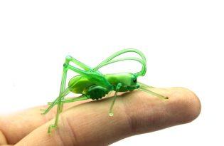 [文創設計]玻璃昆蟲工藝品