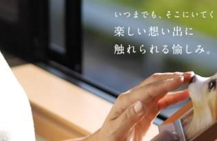 [平面設計]日本出品「3D立體寵物照片」
