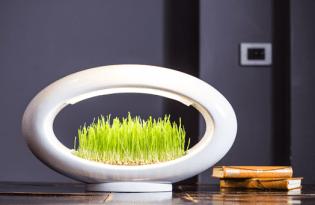 [產品設計]Grasslamp植栽檯燈