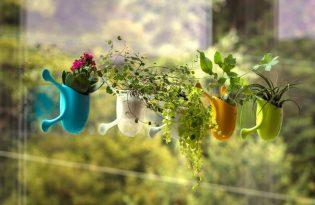 [綠化設計]牆掛式盆栽花瓶