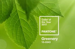 [視覺傳達]2017 PANTONE代表色「Greenery大自然綠」