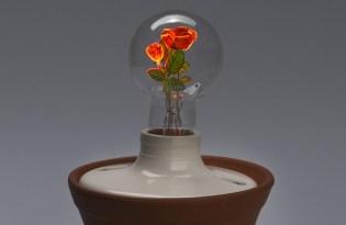 [家具設計]Aerolux出品「創新燈具植栽裝置藝術」