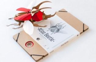 [工藝設計]荷蘭 Assembli 3D立體昆蟲紙雕