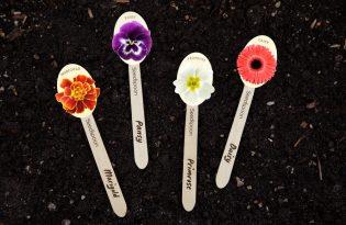 [環保設計]花草種子創意包裝