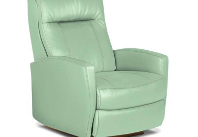Contemporary Leather Accent Chairs