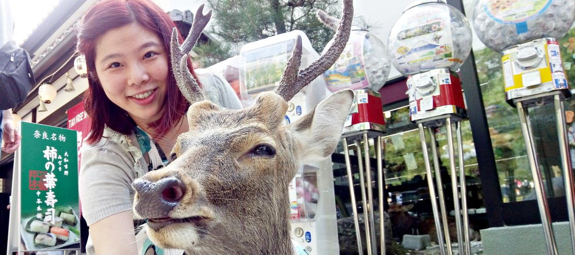日本。奈良