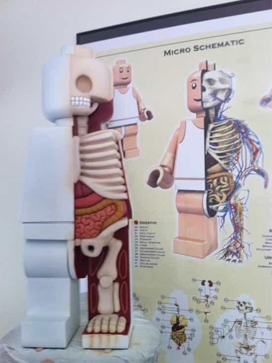 Lego Anatomy by Jason Freeny  GagDaily News