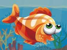 鱼世界之谜