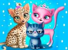 Peluquería para gatos