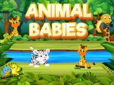 Hayvan bebekler