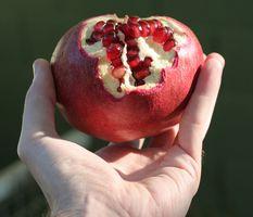 Cele 7 super alimente din Biblie