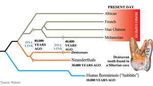 The Biggest Scientific Breakthroughs of 2012