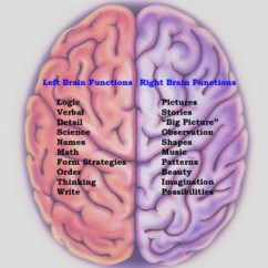 Left Side Brain Functions Diagram Entity Relationship For A Library Management System Myths About The No 1 Right Divide Psychbrief