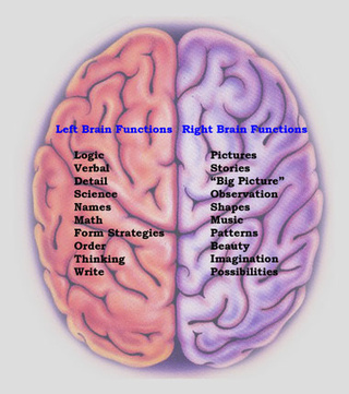 left side brain functions diagram 7 pole trailer wiring myths about the no 1 right divide psychbrief