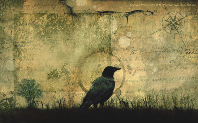 Crows could be the key to understanding alien intelligence
