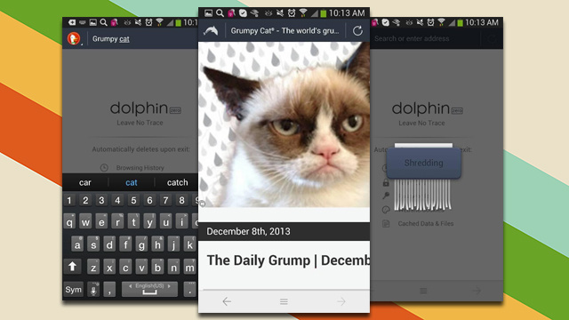 Dolphin Zero is an Entire Browser Devoted to Privacy