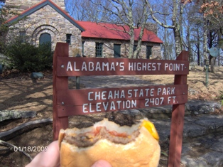 Another shot the disappearing cheeseburger at the information sign.
