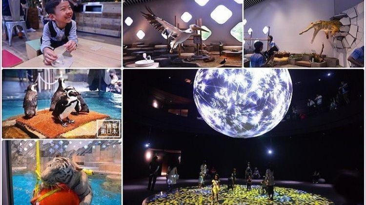 [大阪景點] 大阪EXPOCITY NIFREL水族館 海遊館,零距離接觸鵜鶘 狐猴 企鵝,零距離觀賞水中生物