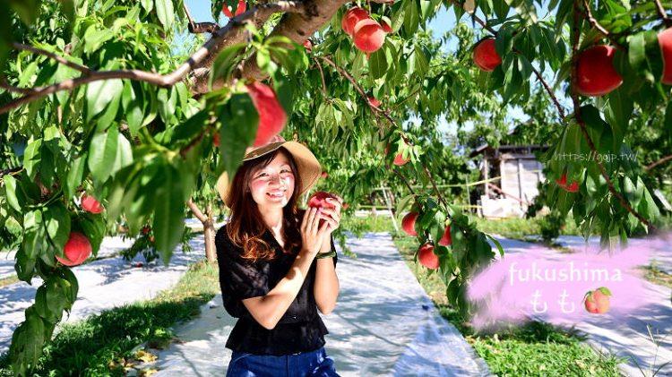 [福島採水蜜桃行程] 水蜜桃吃到飽1000円有找,marusei果樹園老闆根本是藝人!!