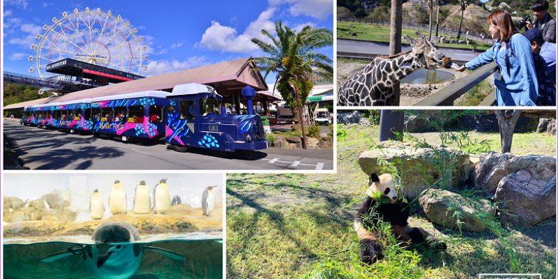 【和歌山親子景點】Adventure World冒險大世界,結合樂園+動物園+水族館