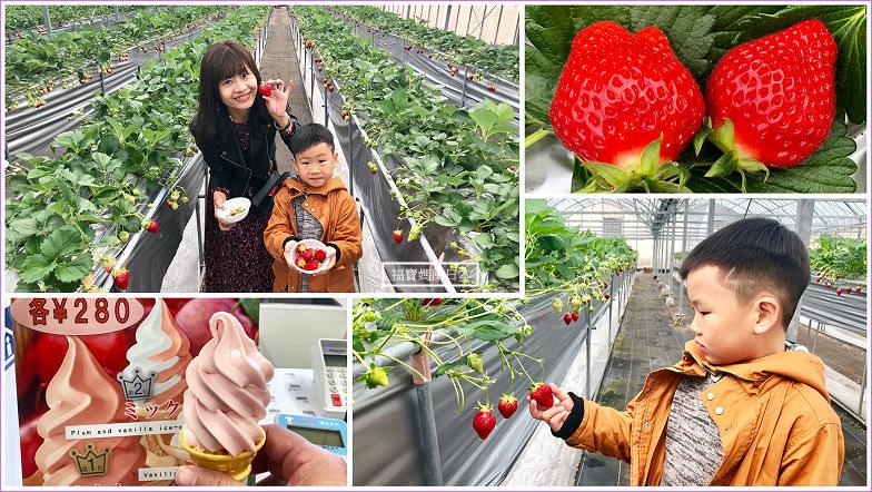 高松採草莓~小豆島ふるさと村草莓吃到飽(含折價券資訊),超甜超幸福的小豆島行程